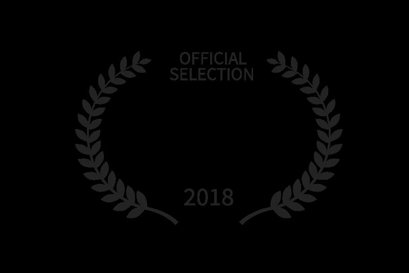 Festival film voyage Lyon